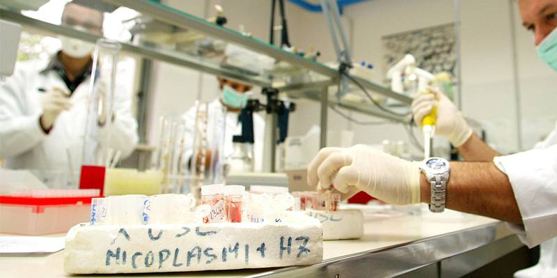 Chi sono i virologi italiani col punteggio H-Index più alto?