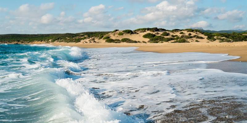 Qual è la differenza tra costa, riva e spiaggia