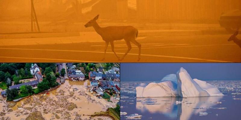 Il rapporto dell'IPCC sui cambiamenti climatici